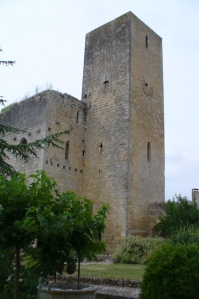 Ste Mere Castle, Gascony, France