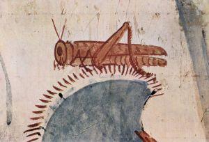 locust-medieval-manuscript