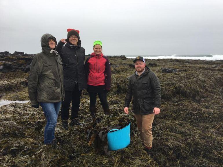 collecting-algae-vicktorija-gediminas-eydis-henrik